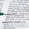 The Adoption Series (1)