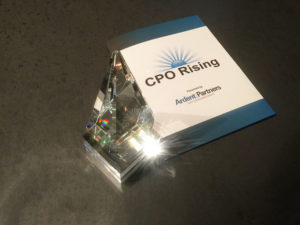 The CPO Rising 2016 Hall of Fame Award and Program.